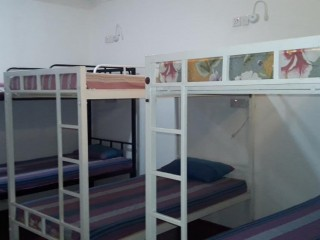 Apartment with furniture and 30 bed hostel for Rent or Lease  Colombo 1