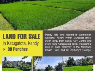 Land for sale - A Splendid Opportunity to Own a Land in Kandy