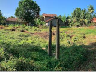 40 Perch Land for Sale - 75m to Galle - Matara Road - 1.3 million per perch