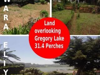 Safetynet Pvt Ltd - Land overlooking Gregory Lake 31.4 Perches in Nuwara Eliya